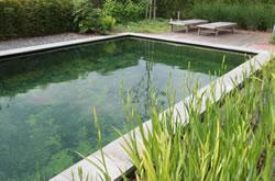 Zwemvijvers archieven the pond library for Zwemvijver afmetingen
