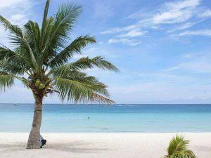De vijver tijdens uw vakantie