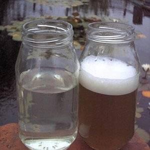 zomer-filtraat-eiwitafschuimer