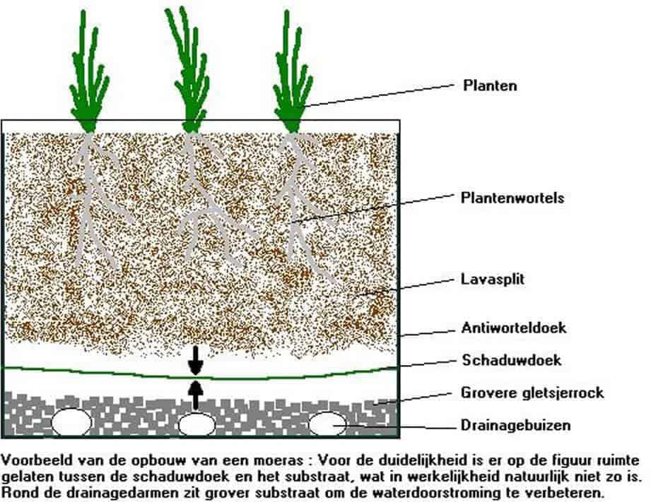 opbouw-moerasfilter
