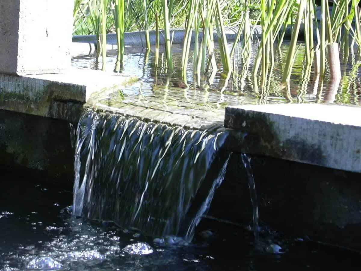 watergordijn-moerasfilter-vijver