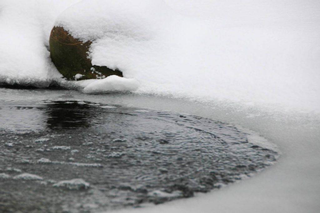 vijver-in-de-winter