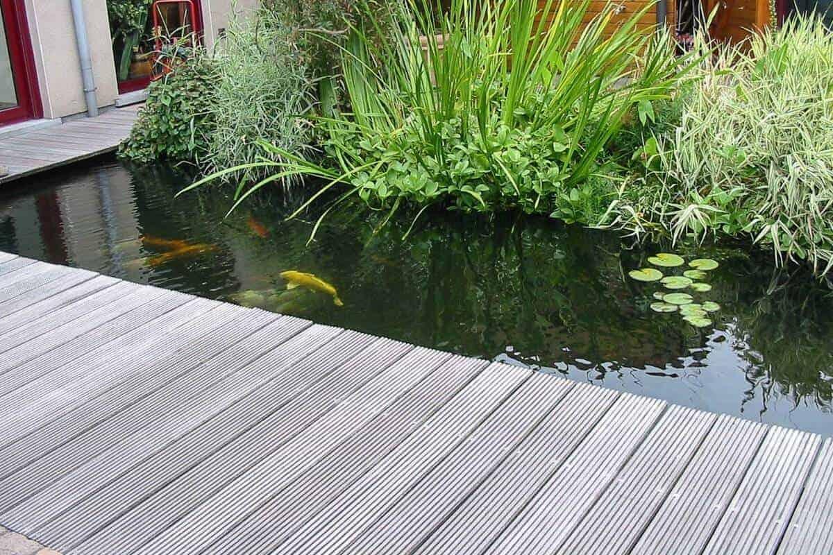 10 manieren om een vijverrand af te werken the pond library