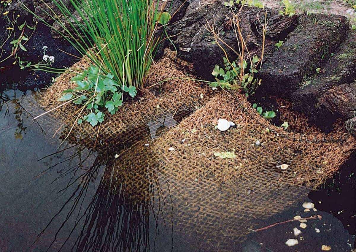 10 manieren om een vijverrand af te werken the pond library for Vijverrand maken