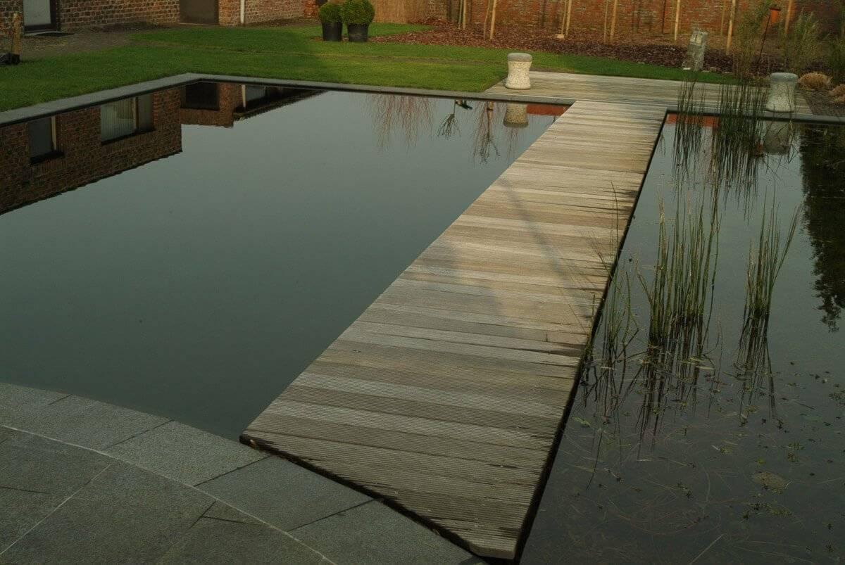 De beste afmetingen van een zwemvijver the pond library for Zwemvijver afmetingen