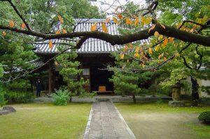 20 Japanse tuinen en tempels