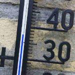 10 tips voor je vijver en vissen tijdens een hittegolf