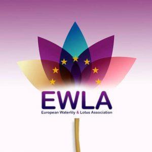 Europese Waterlelie en Lotus Vereniging officieel opgericht