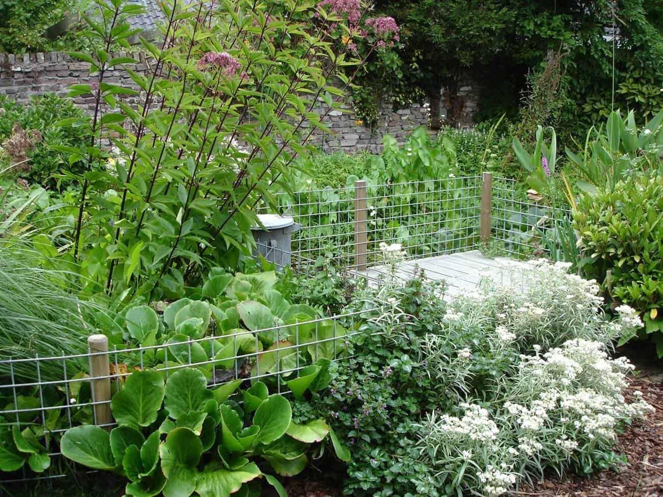 functionele tuin