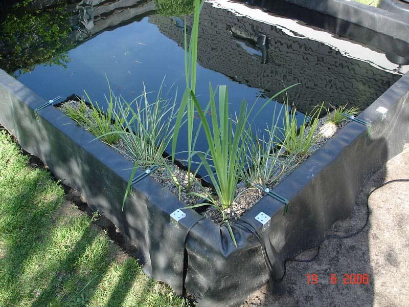 Beste Plantenbak langs rand vijver? – Vijverontwerp en Aanleg – The Pond PU-45